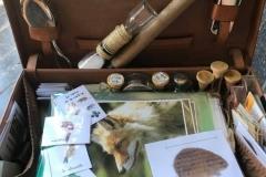 valise explorateurs de la chaine alimentaire: photos plastifiées des animaux de la forêt et des campagnes, badge DIY,...